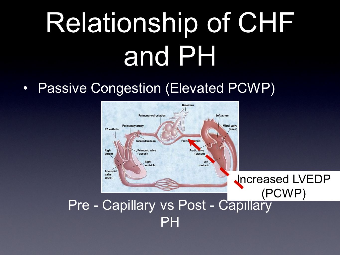 Relationship of CHF and PH