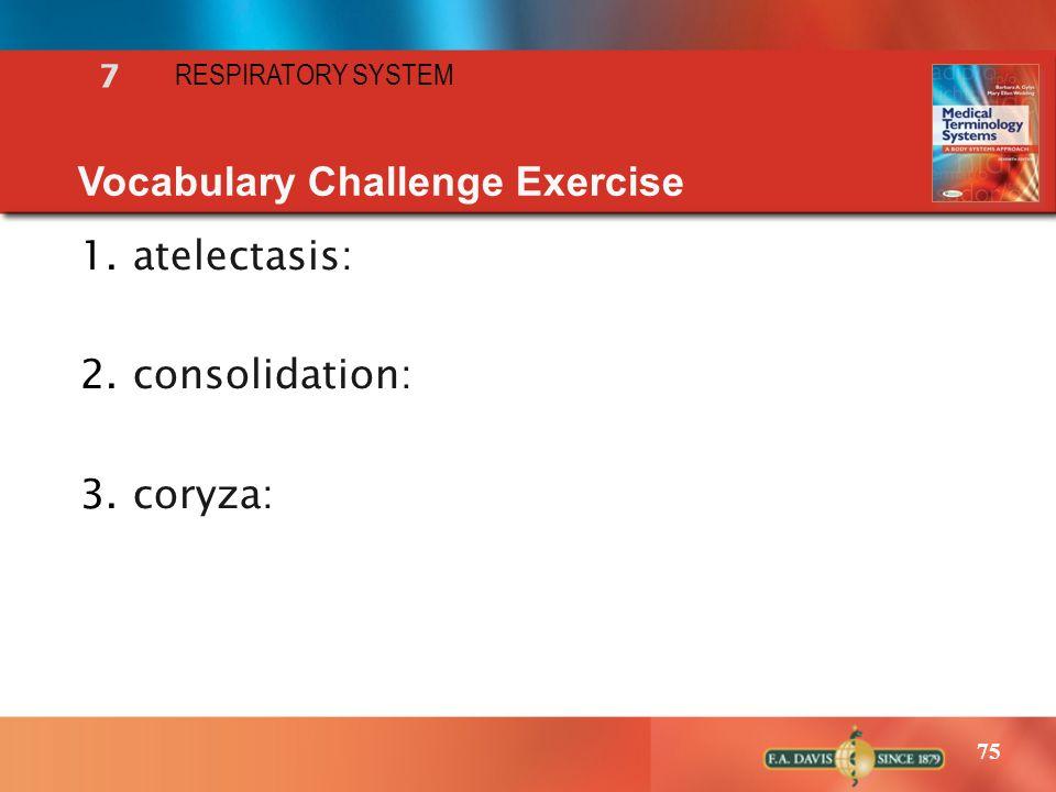 Vocabulary Challenge Exercise