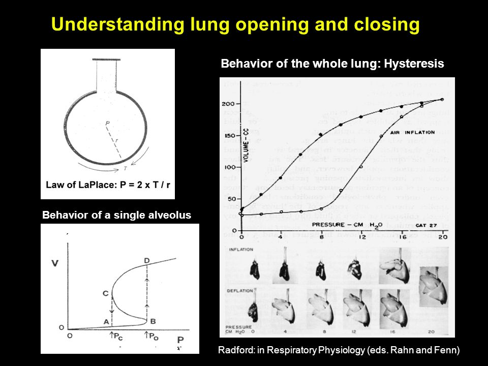 Understanding lung opening and closing