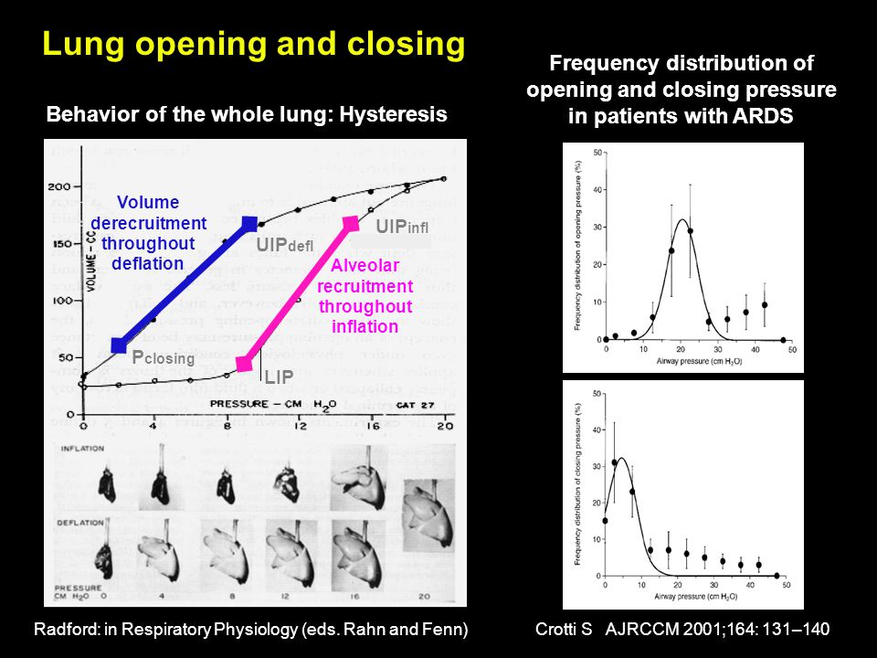 Lung opening and closing
