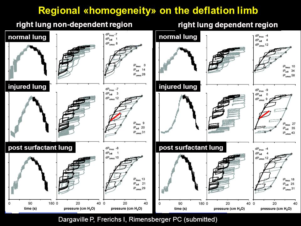Regional «homogeneity» on the deflation limb