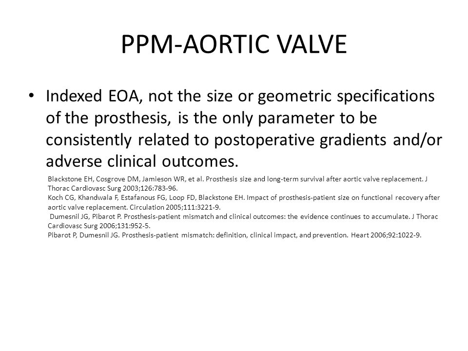 PPM-AORTIC VALVE