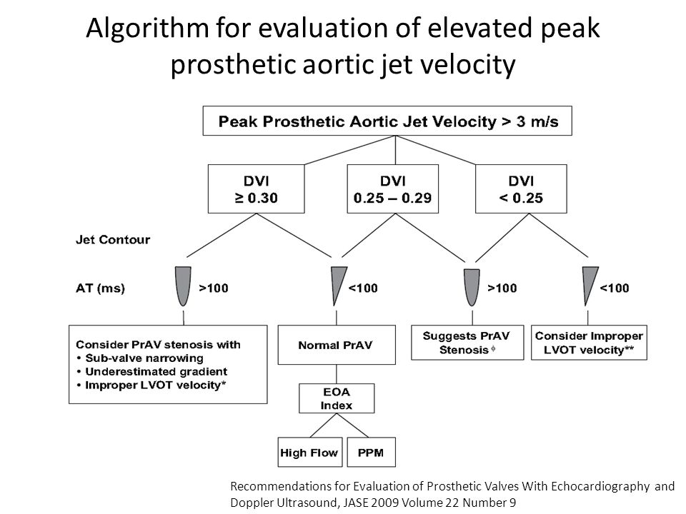 Algorithm for evaluation of elevated peak prosthetic aortic jet velocity