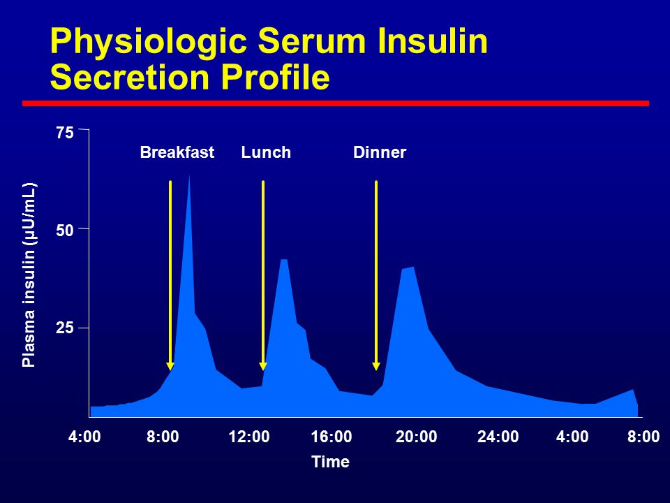 Physiologic Serum Insulin Secretion Profile