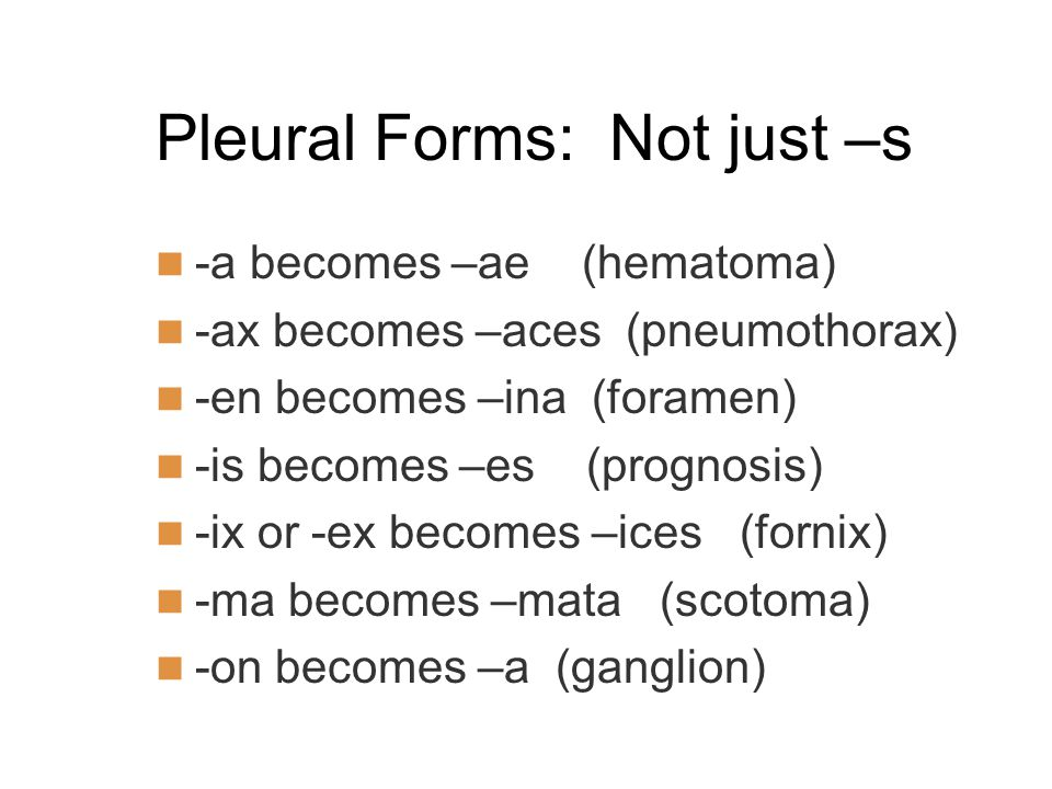 Pleural Forms: Not just –s