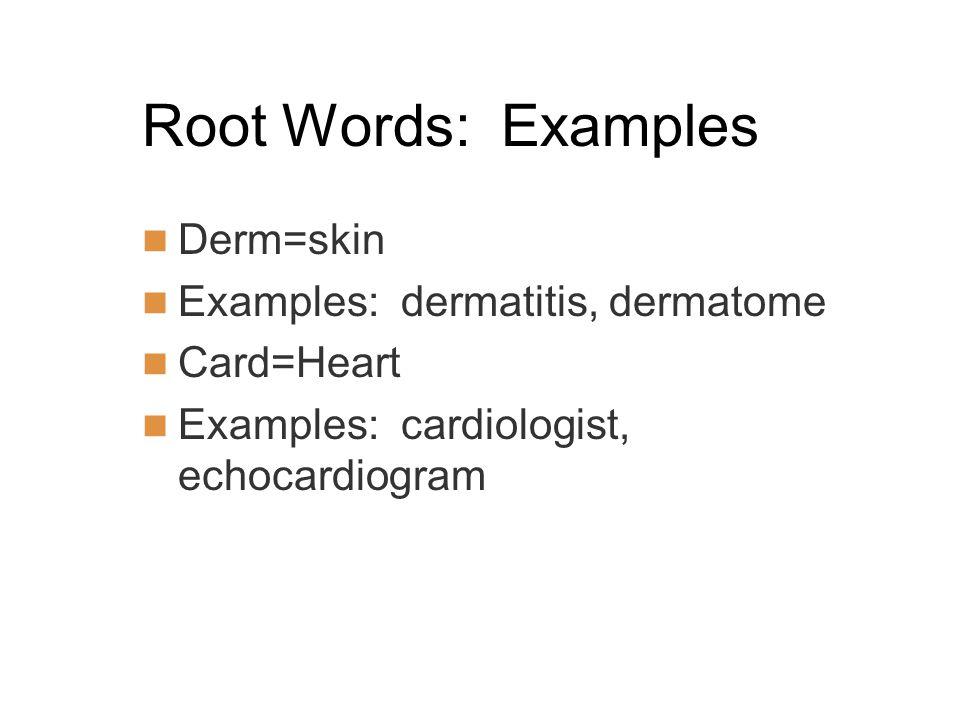 Root Words: Examples Derm=skin Examples: dermatitis, dermatome