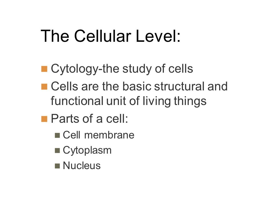 The Cellular Level: Cytology-the study of cells