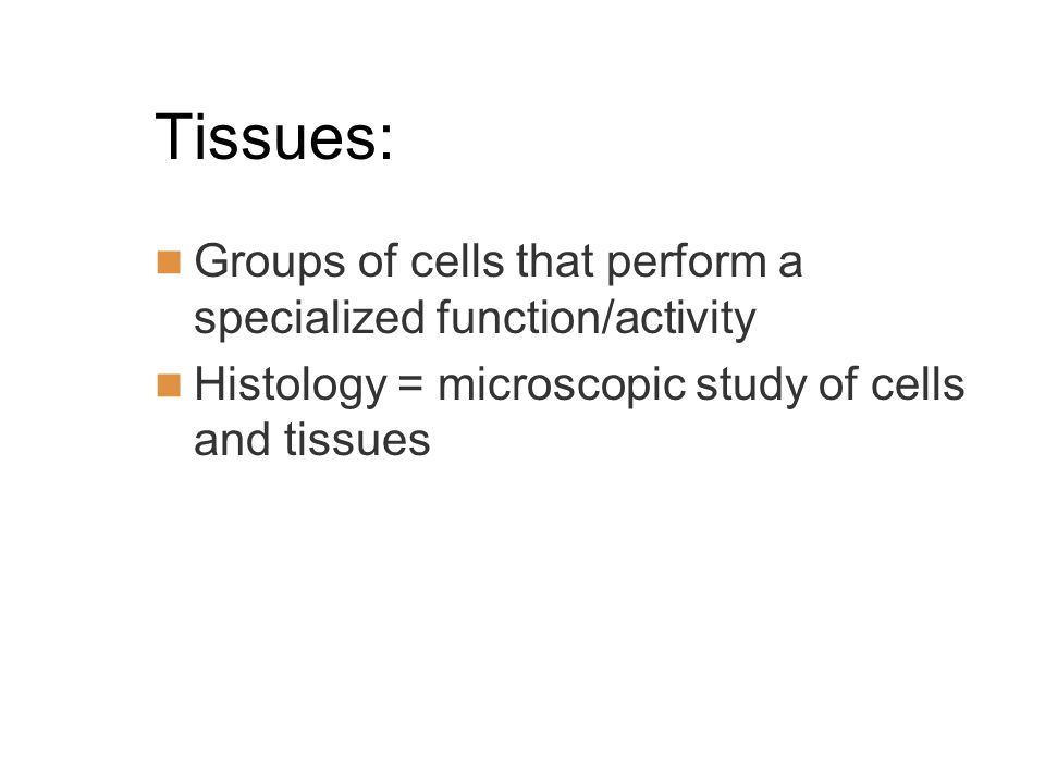 Tissues: Groups of cells that perform a specialized function/activity