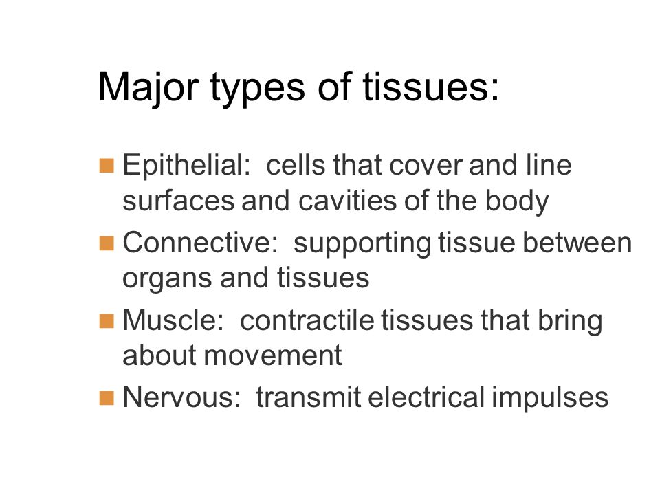Major types of tissues: