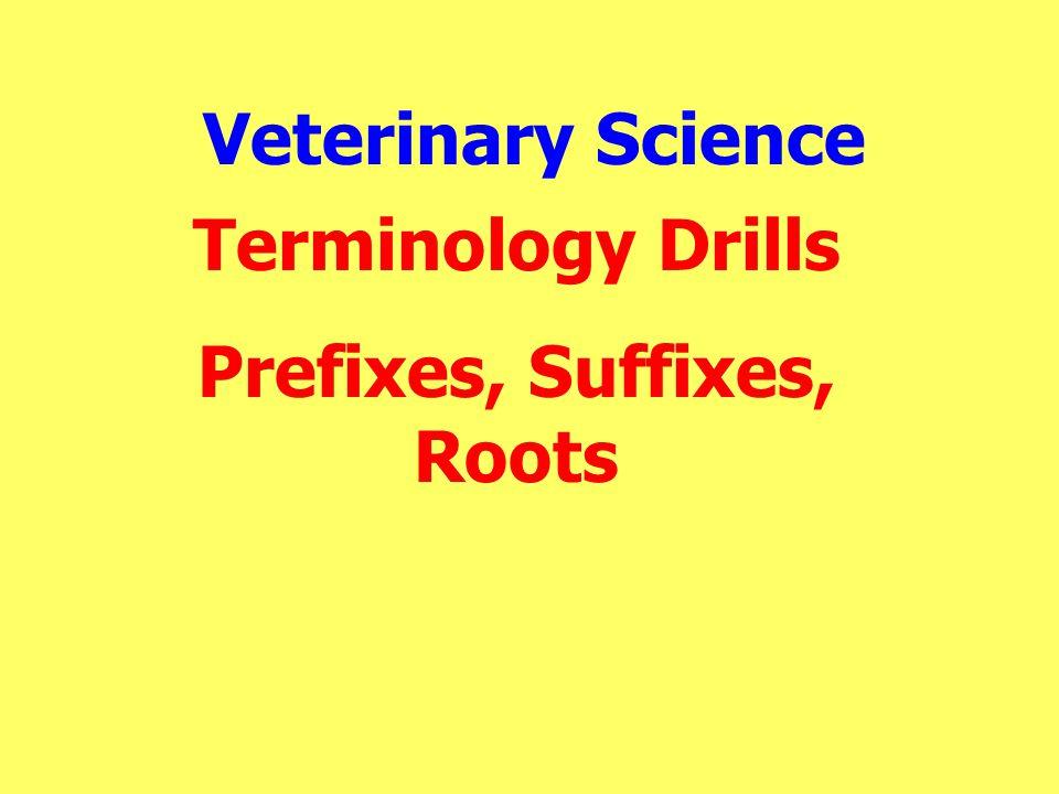 Prefixes, Suffixes, Roots