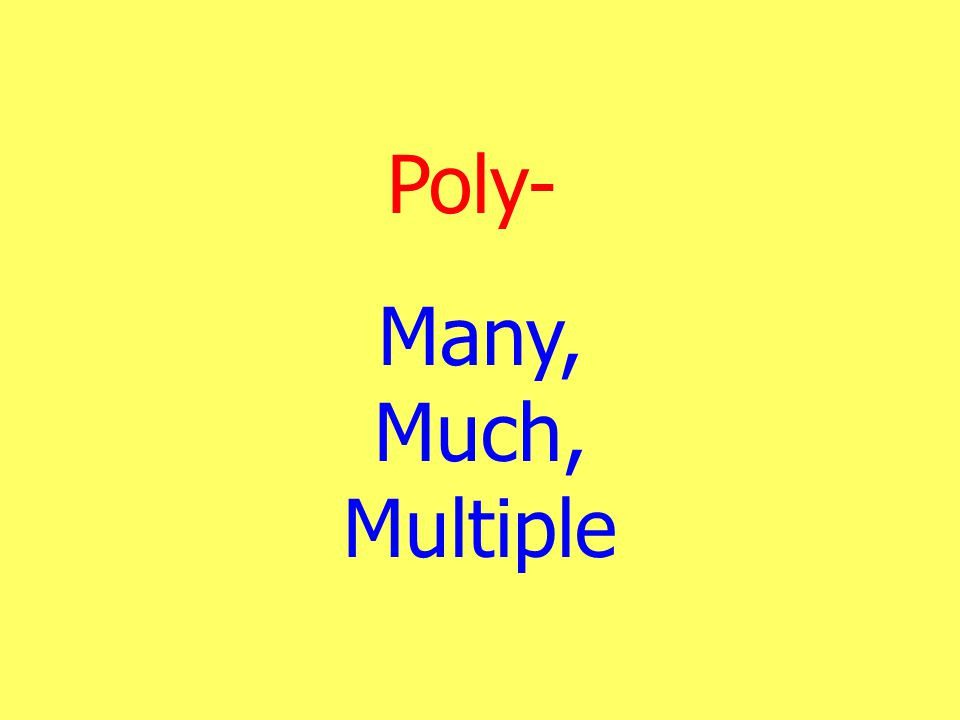 Poly- Many, Much, Multiple