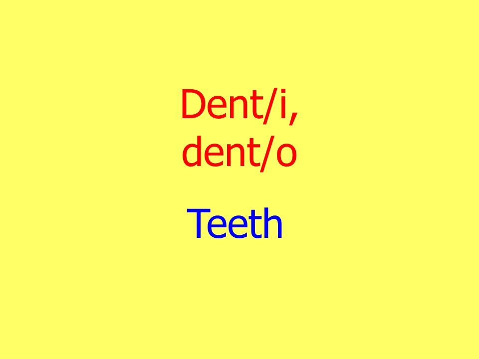 Dent/i, dent/o Teeth