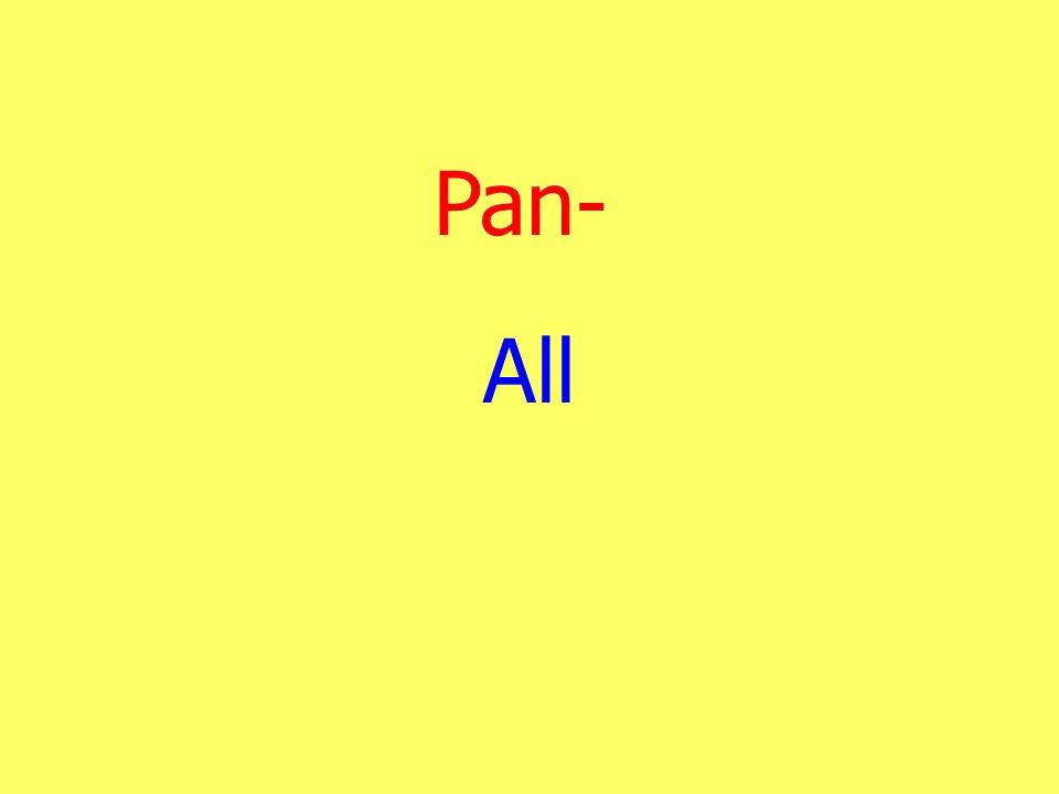 Pan- All