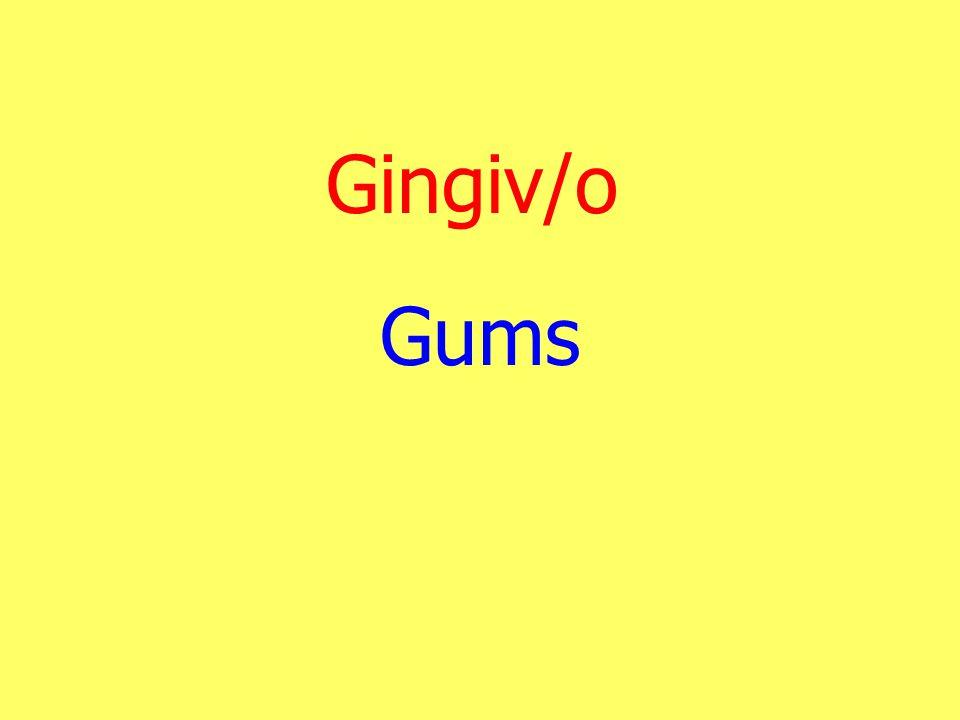 Gingiv/o Gums