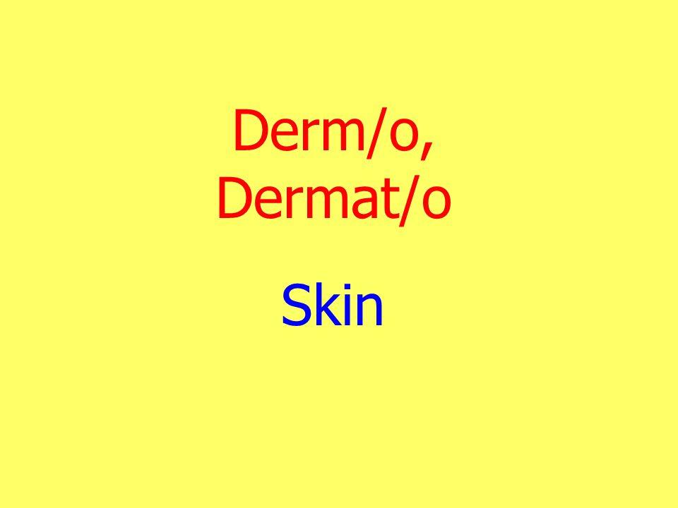 Derm/o, Dermat/o Skin