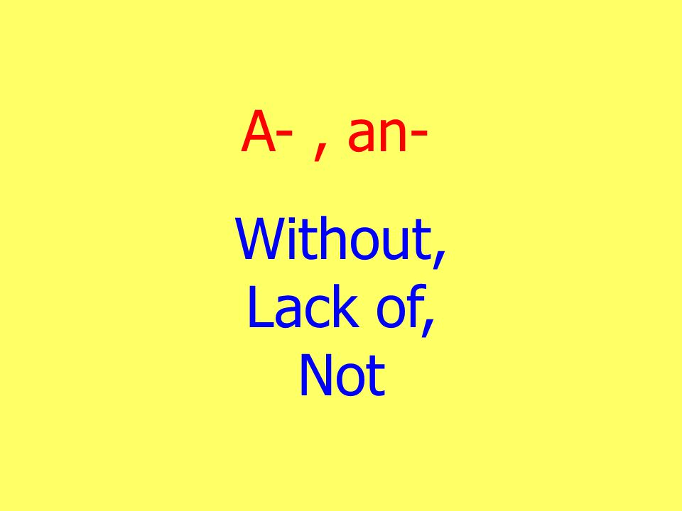 A- , an- Without, Lack of, Not