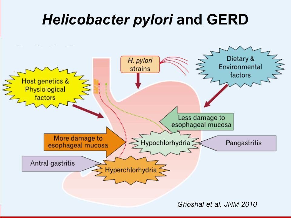 Helicobacter pylori and GERD