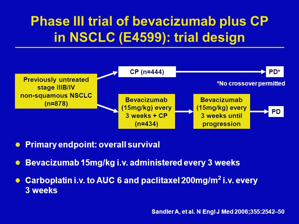 Phase III trial of bevacizumab plus CP in NSCLC (E4599): trial design