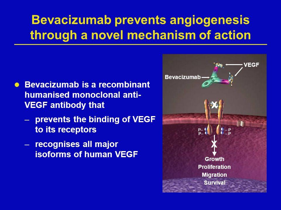Bevacizumab prevents angiogenesis through a novel mechanism of action