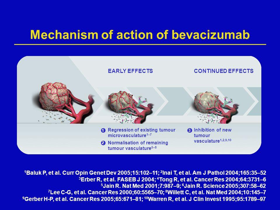 Mechanism of action of bevacizumab