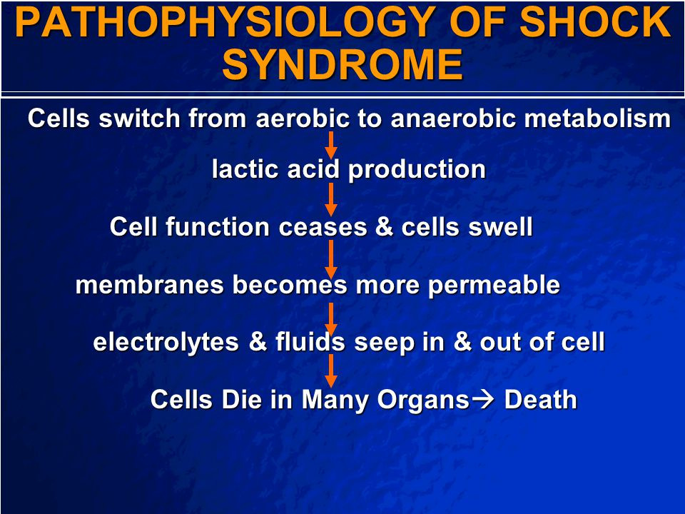 PATHOPHYSIOLOGY OF SHOCK SYNDROME
