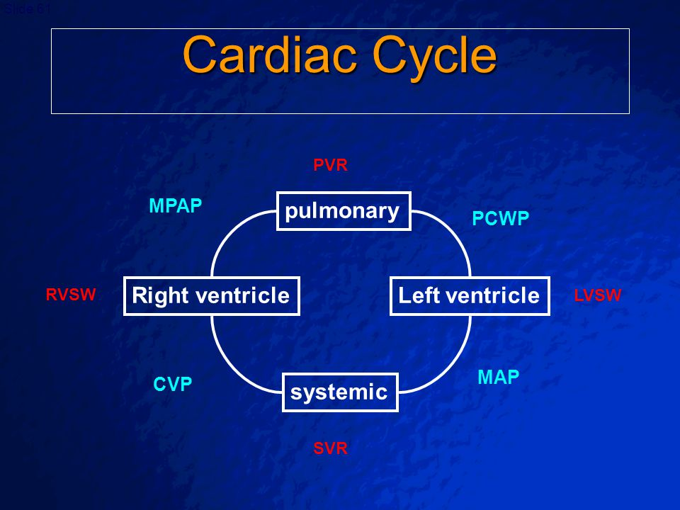 Cardiac Cycle pulmonary Right ventricle Left ventricle systemic MPAP
