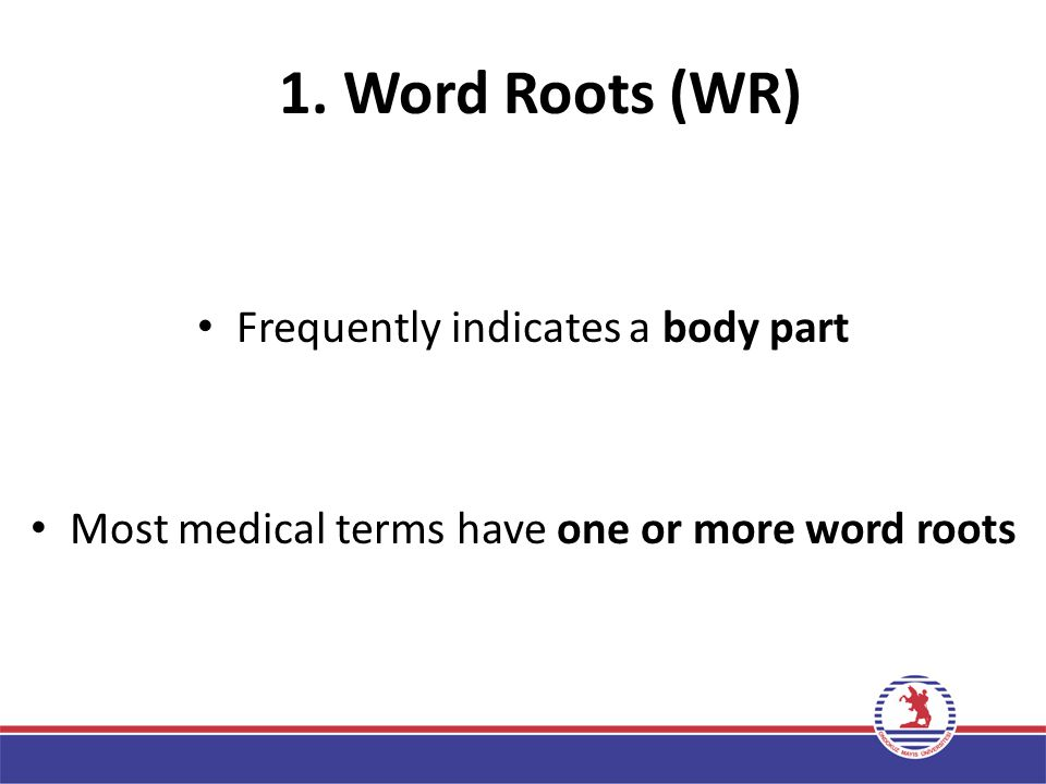 1. Word Roots (WR) Frequently indicates a body part