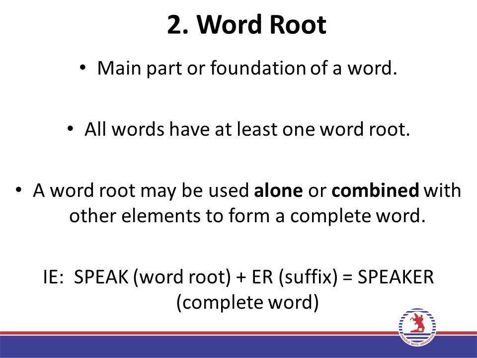 2. Word Root Main part or foundation of a word.