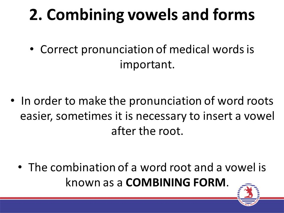 2. Combining vowels and forms