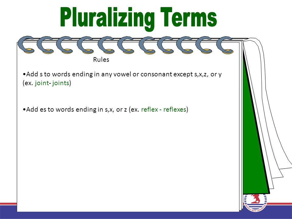 Pluralizing Terms Pluralizing Terms Rules