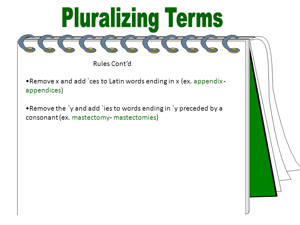 Pluralizing Terms Rules Cont'd