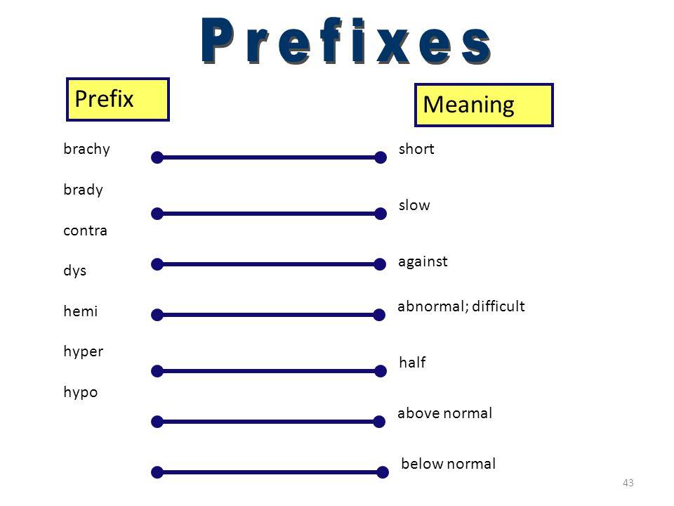 Prefixes (brachy–hypo)