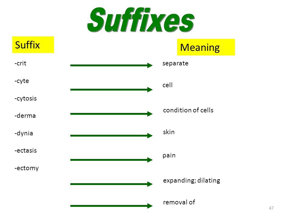 Suffixes (crit–ectomy)