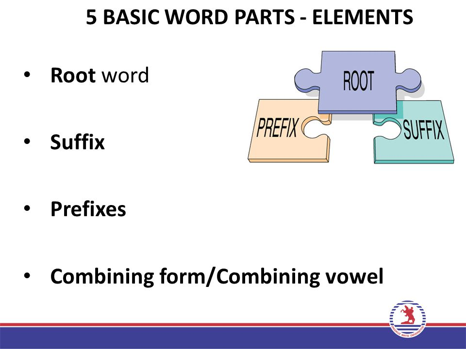 5 BASIC WORD PARTS - ELEMENTS