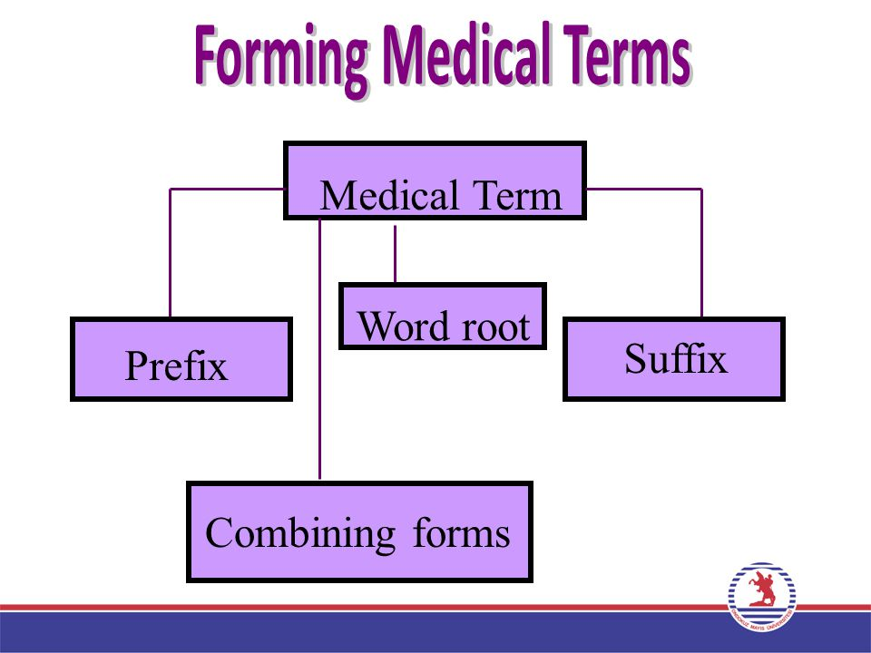 Forming Medical Terms Forming Medical Terms Medical Term Word root