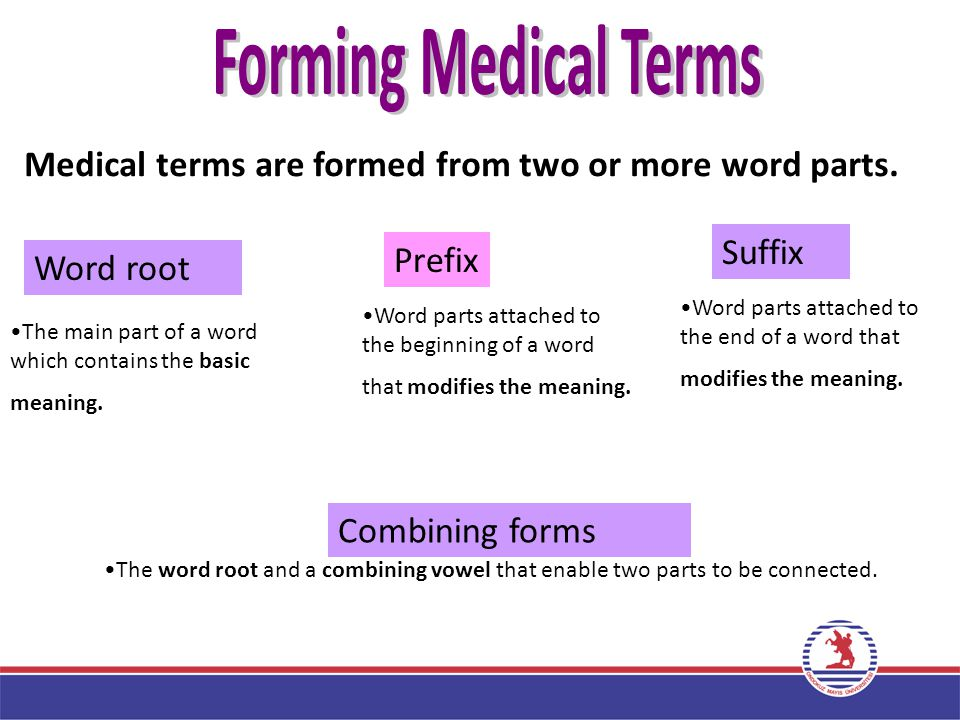 Forming Medical Terms Part 2