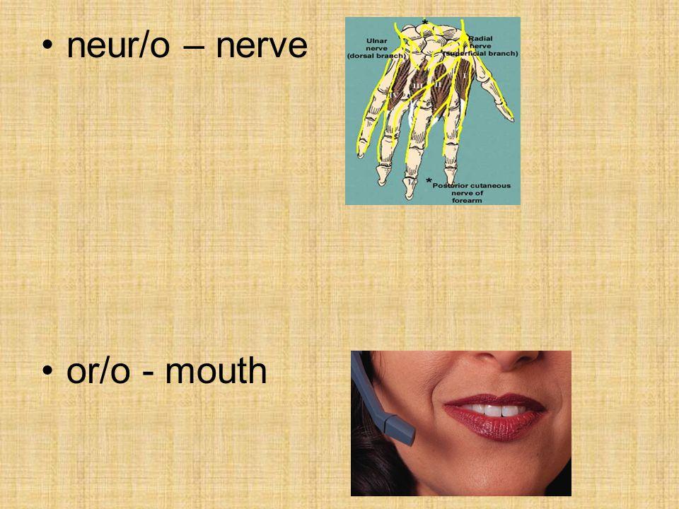 neur/o – nerve or/o - mouth