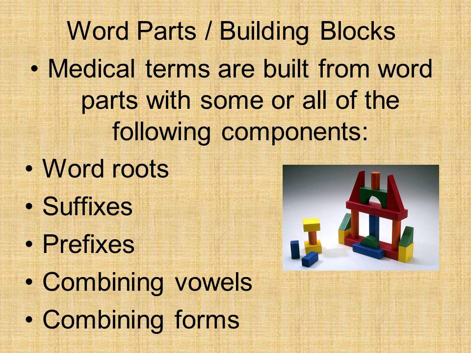 Word Parts / Building Blocks
