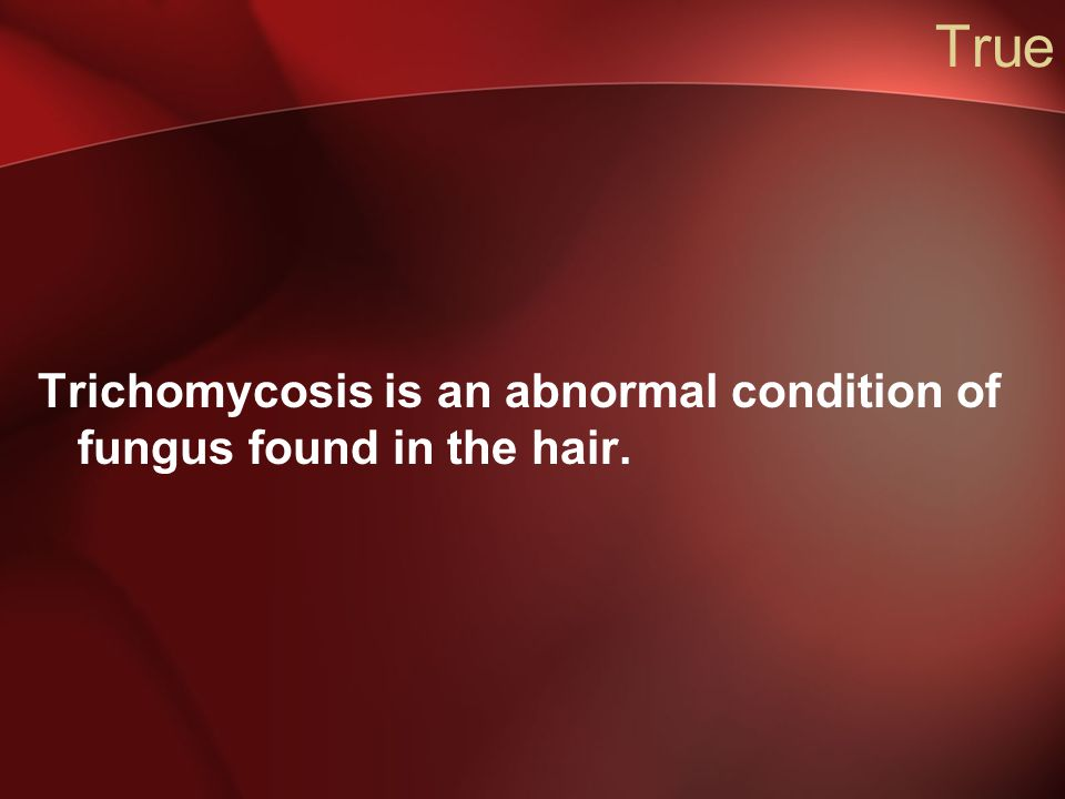 True Trichomycosis is an abnormal condition of fungus found in the hair.