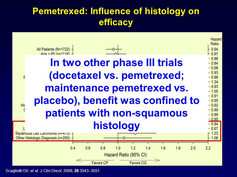 Pemetrexed: Influence of histology on efficacy