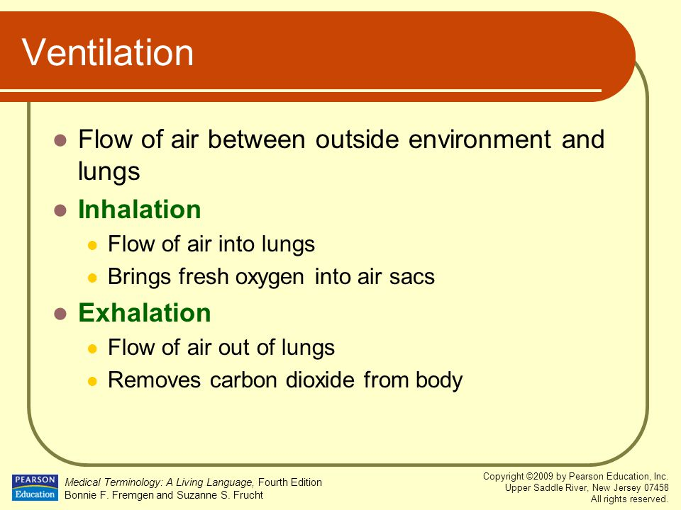 Ventilation Flow of air between outside environment and lungs