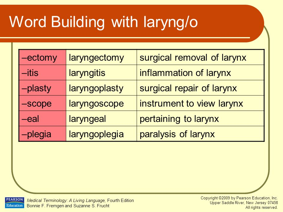 Word Building with laryng/o