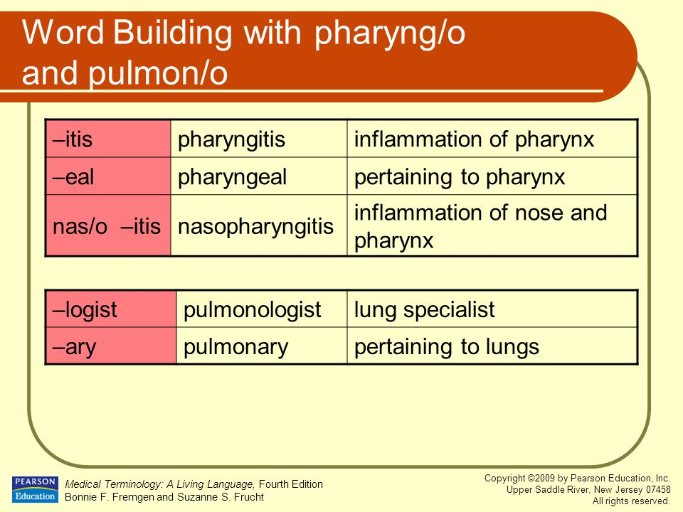 Word Building with pharyng/o and pulmon/o