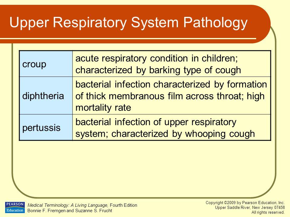 Upper Respiratory System Pathology