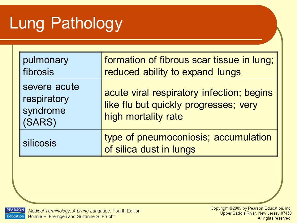 Lung Pathology pulmonary fibrosis