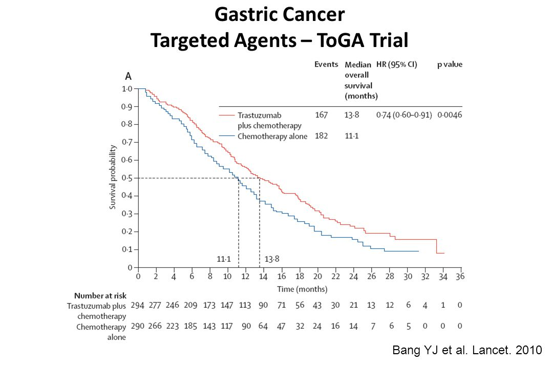Gastric Cancer Targeted Agents – ToGA Trial