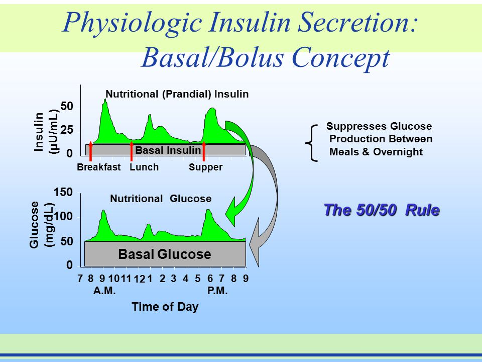 Physiologic Insulin Secretion: Basal/Bolus Concept