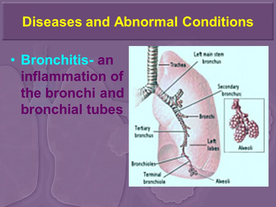 Diseases and Abnormal Conditions