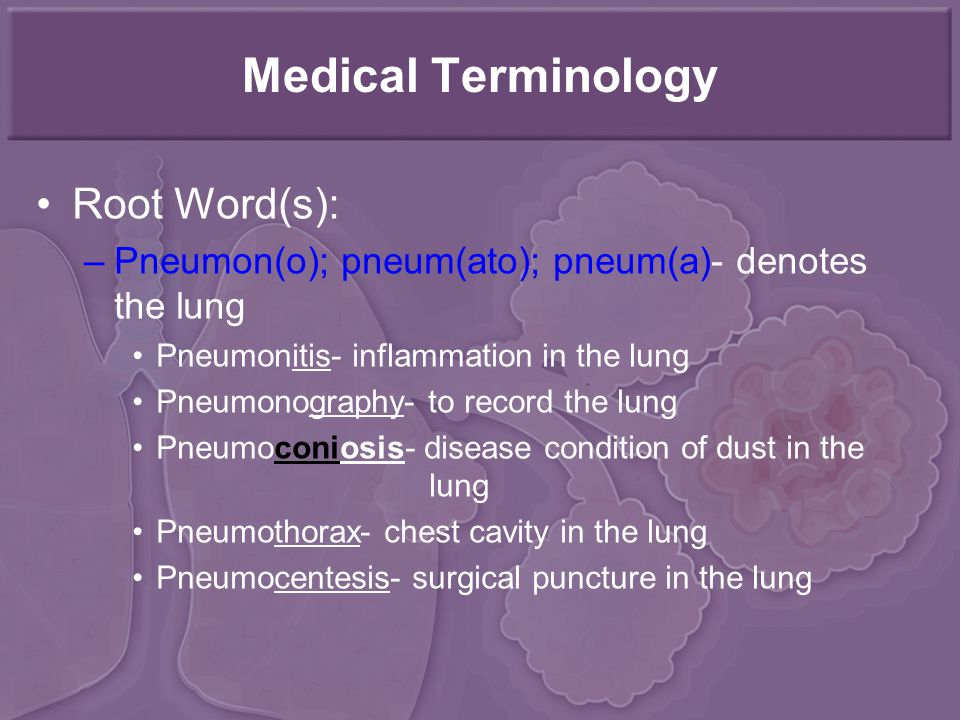 Medical Terminology Root Word(s):