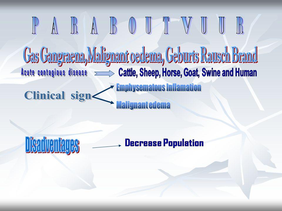 P A R A B O U T V U U R Disadventages Acute contagious disease